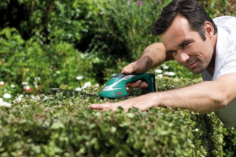Méthodes pour sculpter un arbuste topiaire