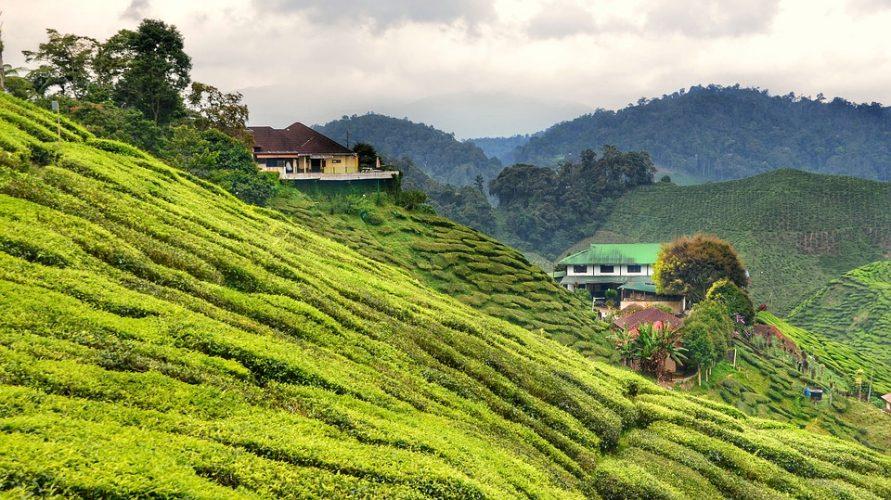 Explorer l'île de Tioman lors d'un séjour en Malaisie